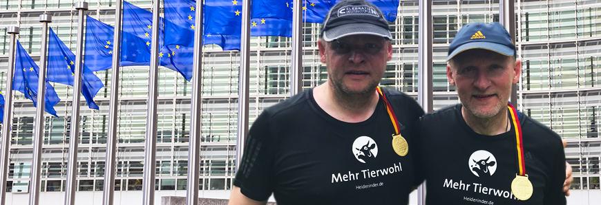 Heiderinder laufen fuer mehr Tierwohl in Brüssel